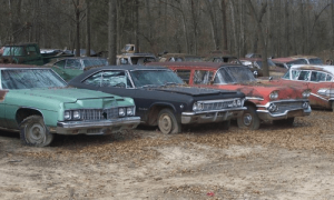 Just some of the Impalas that Steve Brown has for sale.